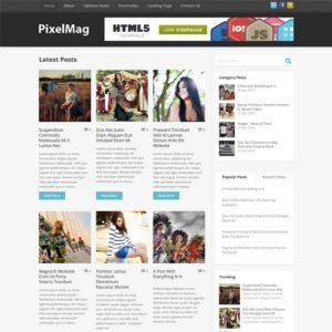 Sale! Buy Discount MyThemeShop Pixelmag WordPress Theme - Cheap Discount Price