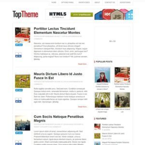 Sale! Buy Discount MyThemeShop Top WordPress Theme - Cheap Discount Price