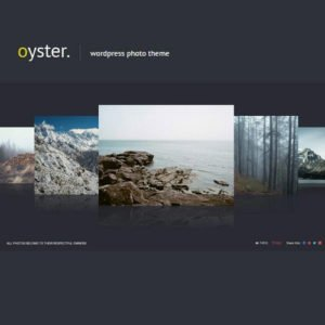 Sale! Buy Discount Oyster – Creative Photo WordPress Theme - Cheap Discount Price