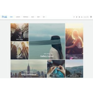 Sale! Buy Discount Themify Peak WordPress Theme - Cheap Discount Price