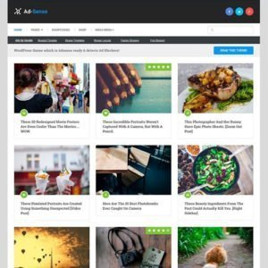 Sale! Buy Discount MyThemeShop Ad-Sense WordPress Theme - Cheap Discount Price
