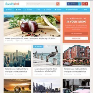 Sale! Buy Discount MyThemeShop SociallyViral WordPress Theme - Cheap Discount Price